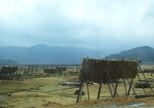 Yunnan13-Lijiang-Shangri La-Route (178)