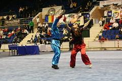 hapkido(0.0), martial arts(0.0), wushu(1.0), sports(1.0),