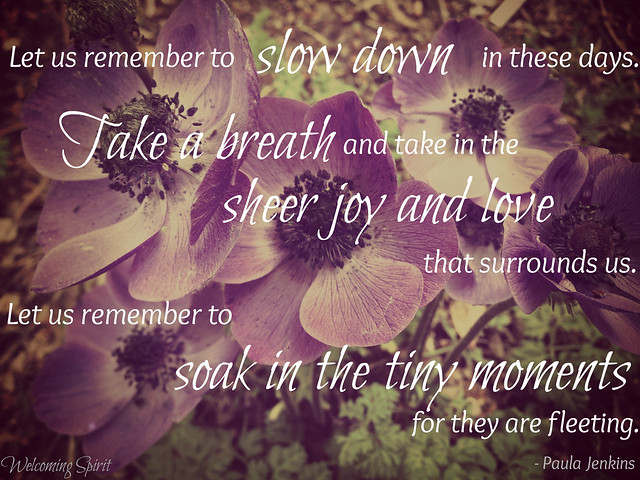Let us remember to slow down in these days, take a breath, and take in the sheer joy and love that surrounds us, surrounds Ian and Sarah. Let remember to soak in the tiny moments for they are fleeting.