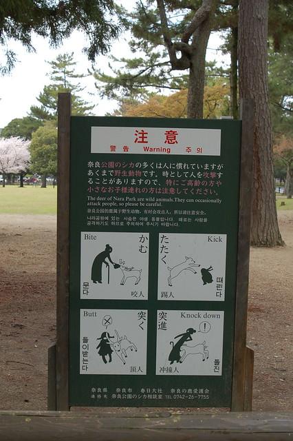 1068 - Nara
