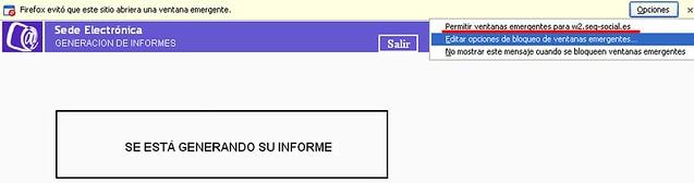 Imagen bloqueo ventana del informe en Firefox