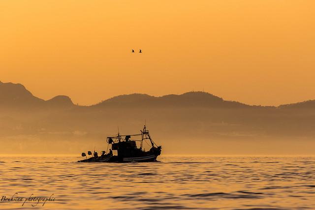 Les pêcheurs de l'été !!!!