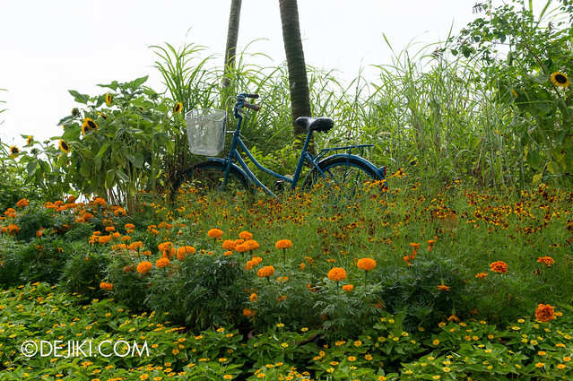 Sentosa Flowers 2013 - Sunflower Island 2