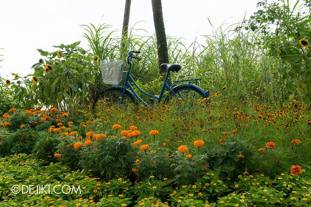 Sentosa Flowers 2013 - Sunflower Island 2