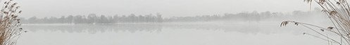A view of Prospect Park Lake, covered in ice, fog, and waterfowl. Best viewed much larger and with audio accompaniment.
