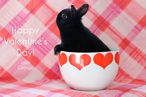 Happy Valentine's Day! by Jeni Baker