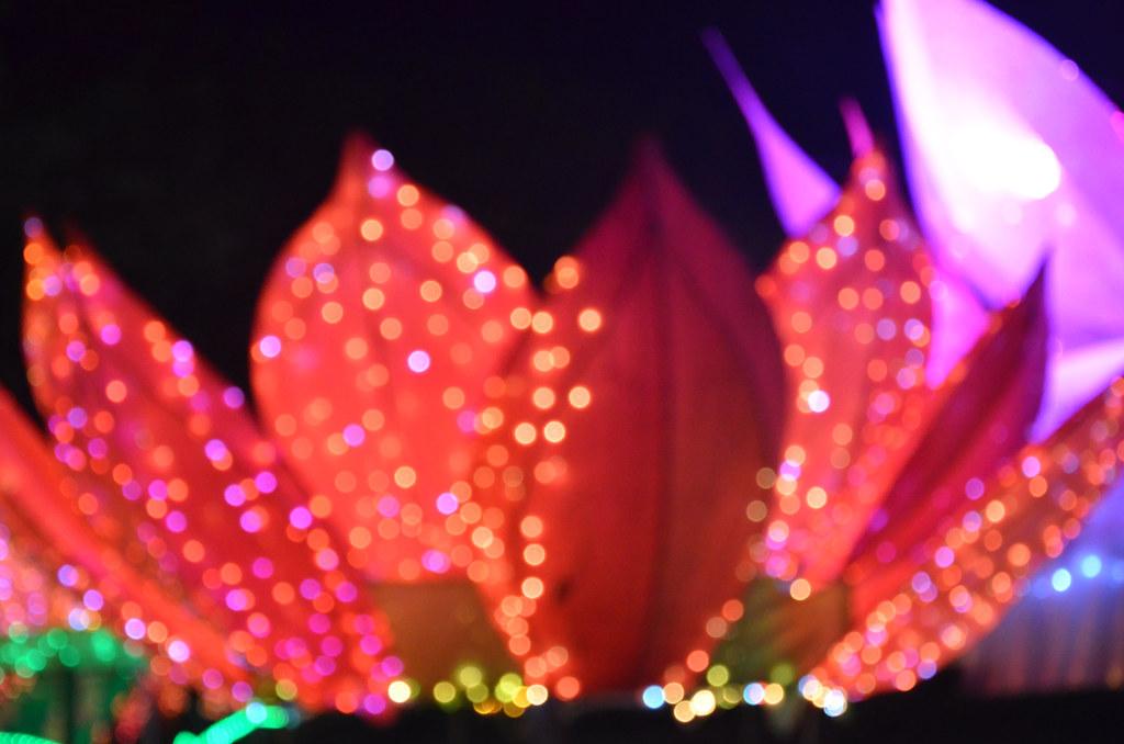 2013 Chinese New Year Lantern & Flora Festival 佛光山東禪寺平安燈會暨花藝展