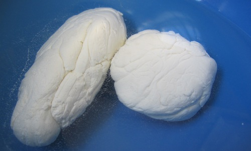 Homemade mozzarella!