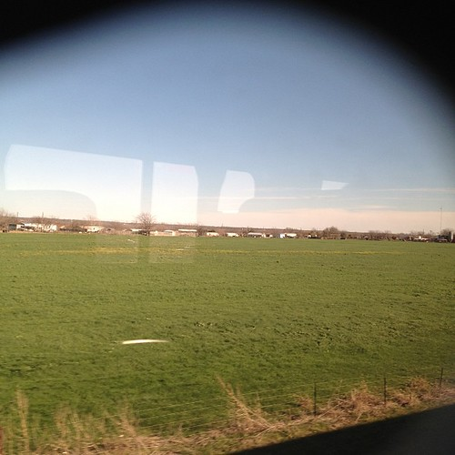 From our train window. It's flat but at least it's green. #texas #trainride