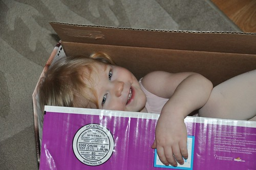 Hadley in a box