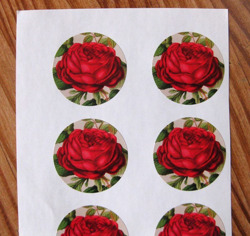 Rose sticker set