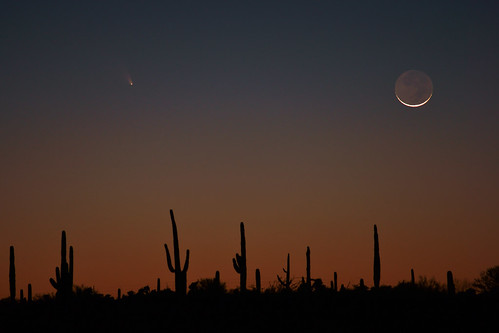 Desert Comet