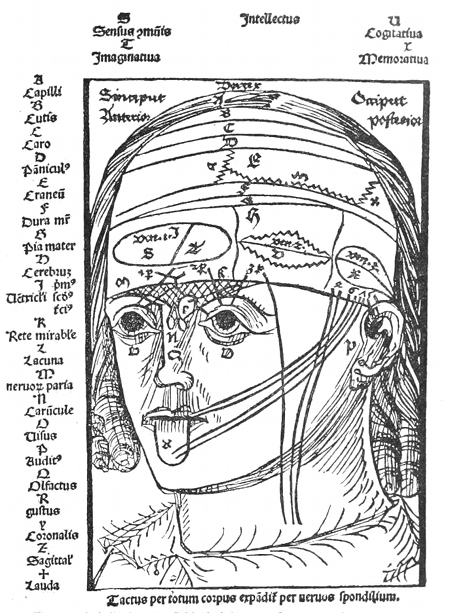 medical imagery of the 15th century  u2013 the public domain review