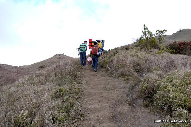 mt-pulag-ambangeg-trail.jpg
