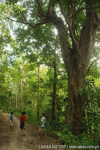 Trek going to Batak Village