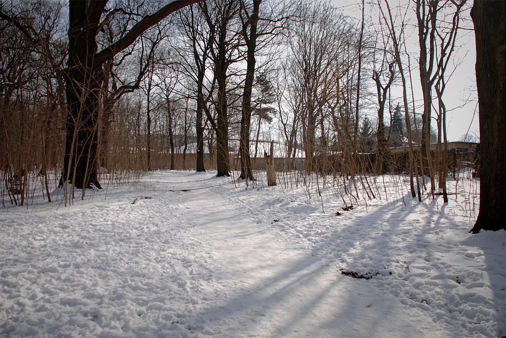 Schönholzer Heide, Pankow