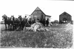 Lower Light Methodist Church in the background c 1925