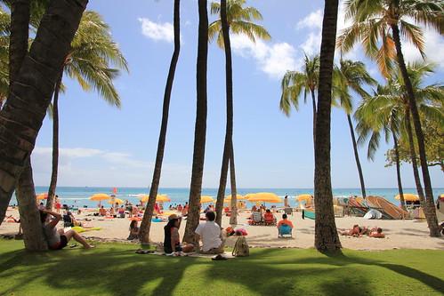 Waikiki Beach . . .