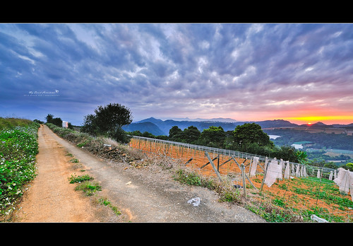 sunset beautiful landscapes nikon taiwan nikkor 台灣 日落 風景 puli 尼康 埔里 合歡山 黑卡 2013 d700 漸層 減光