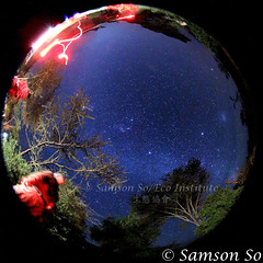 Starry night at equator