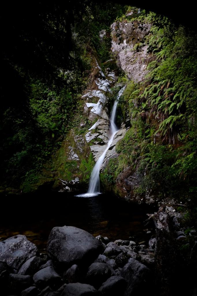 Dorothy Falls, Lake Kaniere.