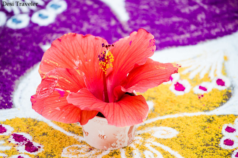 a hibiscus flower in center of a rangoli
