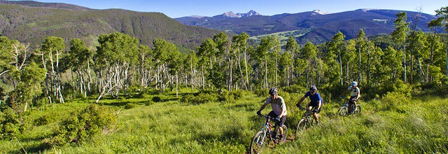 Vail Mountain Biking