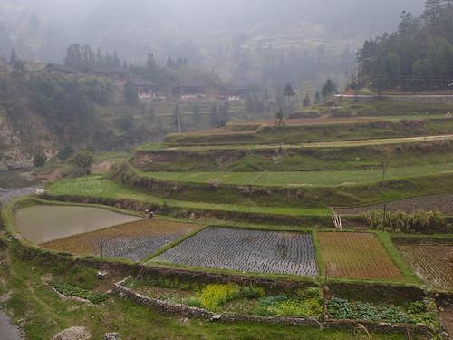 Guizhou13-Kaili-Langde (87)