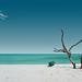 lakshadweep by beetle_0042000