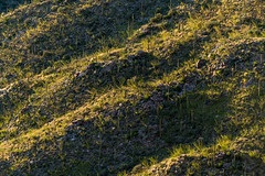 1609 Hillside across from Pontatoc Ridge