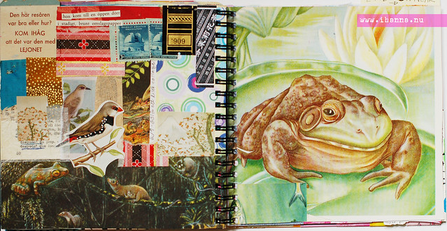 Journal: Toad