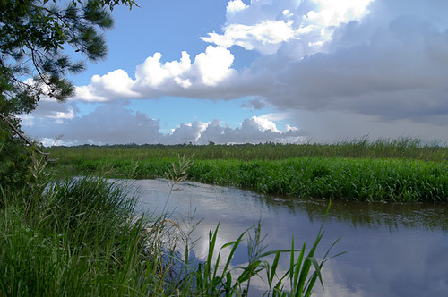 blue sky storm sc beautiful grass clouds river landscape ashley southcarolina charleston grasses stormclouds ashleyriver lowcountry a55 sonya55 ekarlbraun ekarlbraunphotography