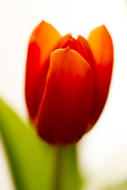 Need spring...