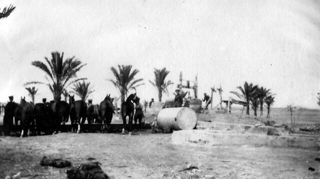 5. Desert Halt