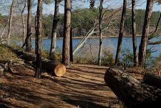Trail and Lake