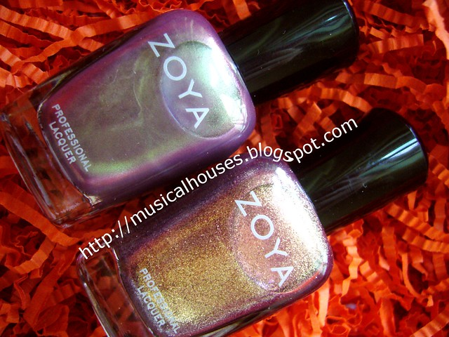 beauty asia zoya