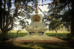 Monastère Nalanda - Photo of Damiatte