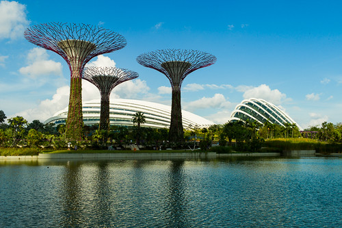 Super Trees at Gardens by the Bay, Singapore