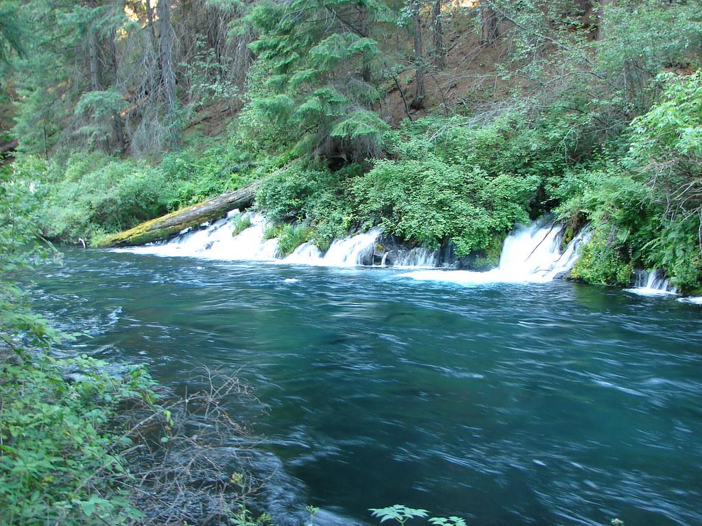Springs along the Metolius River