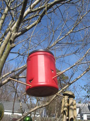 Eco-Friendly Garden: Recycled Bird Feeder