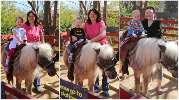 Pony-Rides