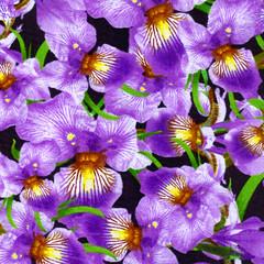 1 floral 3