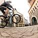 Urban Cyclist 2