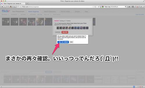 Flickr__Organize_your_photos___videos-2 2