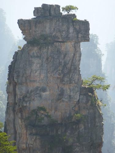 Hunan13-Parc-Tianzi (27)