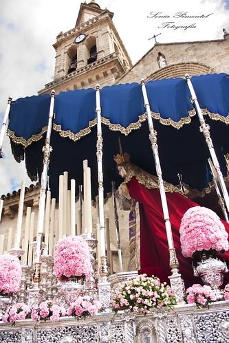 semana santa,entrada triunfal,cordoba,palma,borriquita,domingo ramos,fotografia