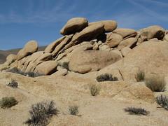 Arch Rock Hike, White Tank Campground, Joshua Tree National Park, California