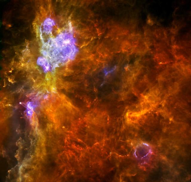 «Généalogie de la matière» au sein de la vaste nébuleuse W3