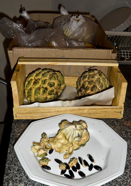 Pinha and Frutas