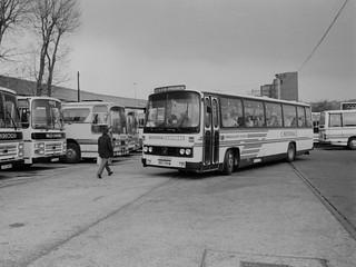 Milk Cup Final 1985, Wembley - Part 1 (Ambassador Travel) (c) Colin Apps